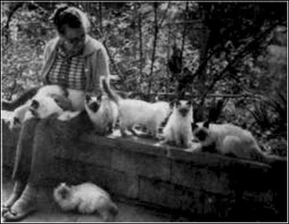 Sylvia Holland Balinese Cat Breeder